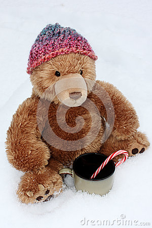 Stuffed Bear Braving the Cold