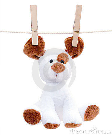 Stuffed dog hanging to dry