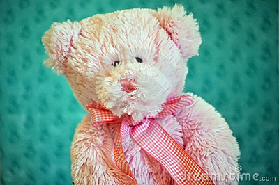 Stuffed toy bear