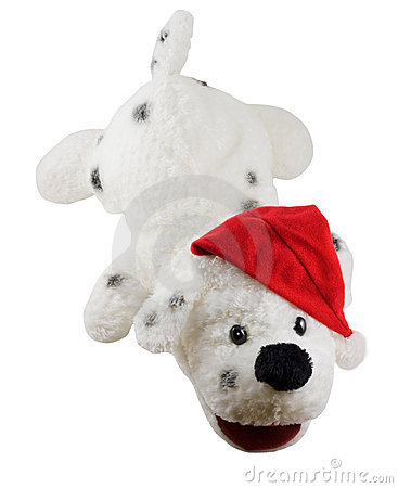Stuffed toy dog and santa hat
