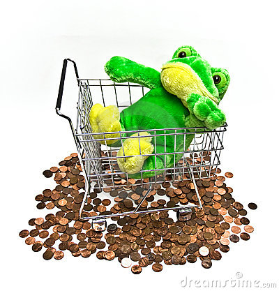 Stuffed Toy Frog in Shopping Cart