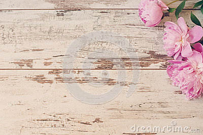 Stunning pink peonies on white light rustic wooden background. Copy space, floral frame. Vintage, haze looking. Wedding car Stock Photo