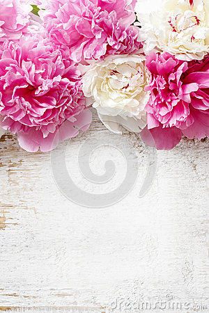 Free Stunning Pink Peonies, Yellow Carnations And Roses Royalty Free Stock Image - 41075476