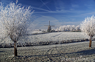 A stunning view of frozen fog on windmill and tree