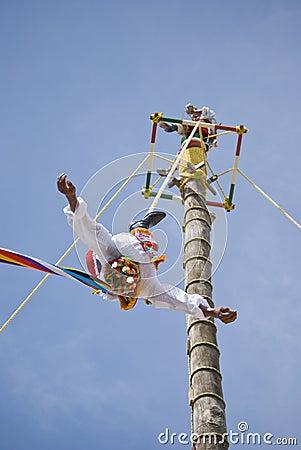 Stunt mexico