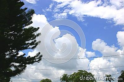 Sturm-Wolken-Versammlung