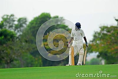 Style of a cricket batsman