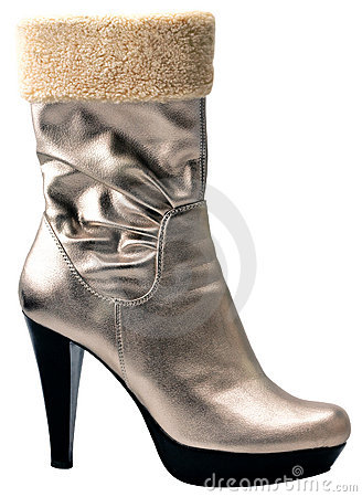 Free Stylish Silver High Heel Fashion Boot Stock Images - 7889394