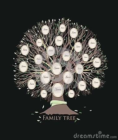 Free Stylized Family Tree Or Pedigree Chart Template With Branches And Round Photo Frames Isolated On Black Background Stock Photos - 112471913