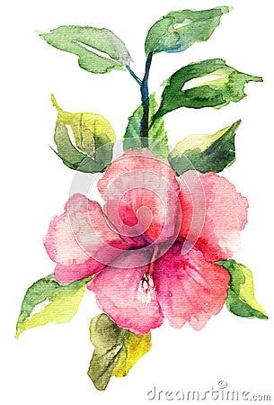 Stylized Malva flower