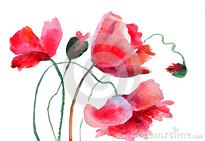 Stylized Poppy flowers