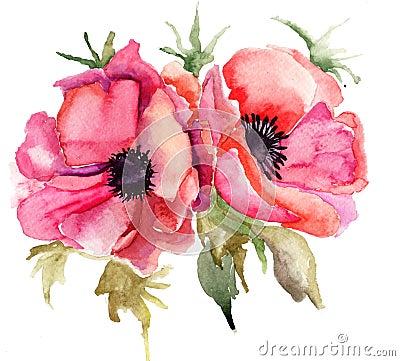 Free Stylized Poppy Flowers Illustration Royalty Free Stock Images - 27820749