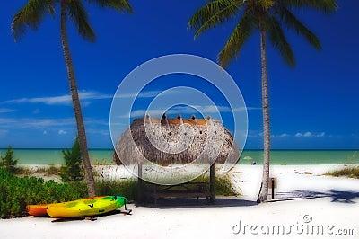Stylized Tropical Paradise