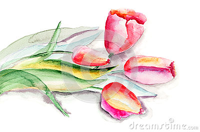 Stylized Tulips flowers illustration