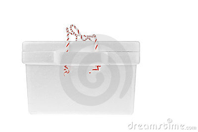 Styrofoam storage box on white background
