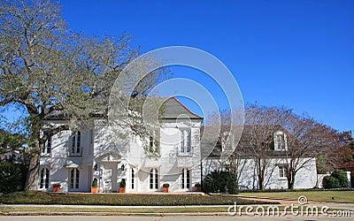 Suburban  huge house