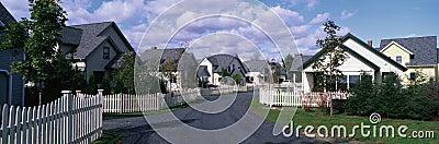 Suburban neighborhood homes