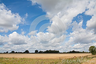 Suffolk Big Sky