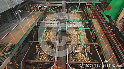 Sugar processing factory machine. Food processing plant. Washing machine. Sugar processing factory machine. Food processing industry. Washing machine at stock video