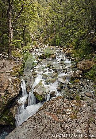 Sugarloaf Stream, Mount Aspiring National Park, New Zealand