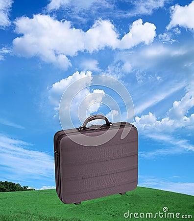 Free Suitcase Royalty Free Stock Image - 9241546