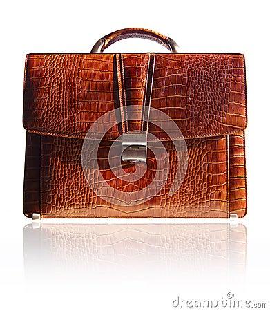 Free Suitcase From Crocodile Skin Stock Image - 9447421