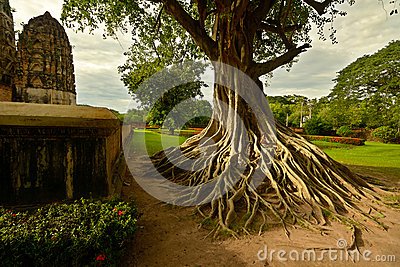 Sukhothai temples