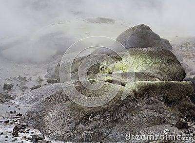 sulphur rocks through geotermal activity