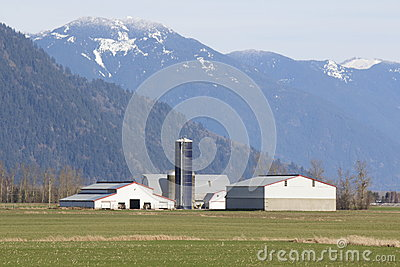 Sumas Mountain Farm