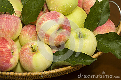 Summer apples closeup