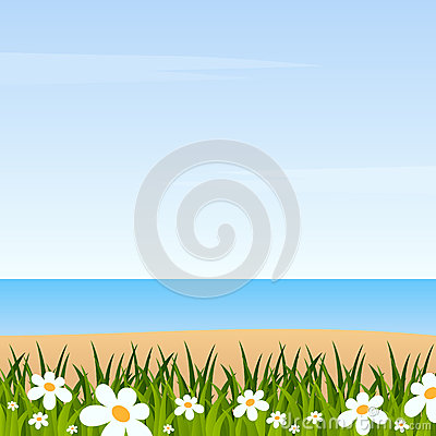 Summer Background with Grass & Beach