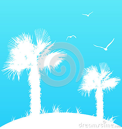 Summer background with palm trees and seagulls