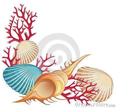 Seashells Clipart Summer-banner-seashells- ...