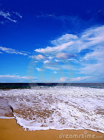 Free Summer Beach Royalty Free Stock Photography - 108137