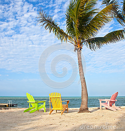 Summer beach scene with palm trees and lounge chairs