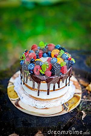 Free Summer Berry Cake Royalty Free Stock Image - 58480656