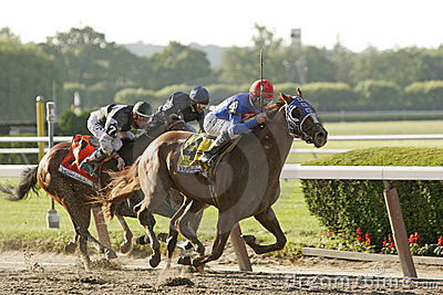 Summer Bird Wins The 2009 Belmont Stakes Editorial Stock Image