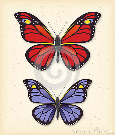 Summer butterfly vector set