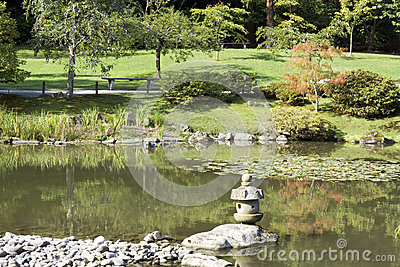 Summer charm in japanese garden