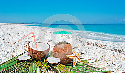 Summer with coconuts