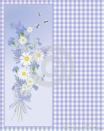 Summer cornflower