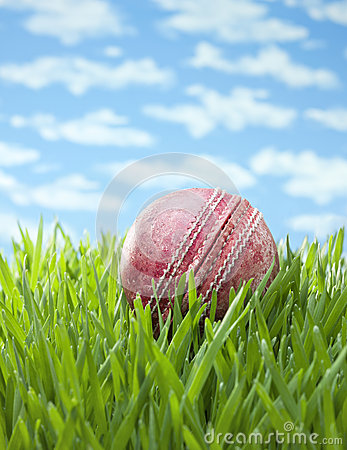 Sports Cricket Ball Grass Background