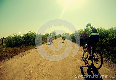 Summer cycling Editorial Stock Image