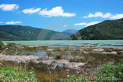 Summer day at Scenic Queen Charlotte sound