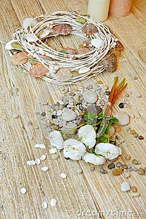 Free Summer Decor Royalty Free Stock Image - 12050806