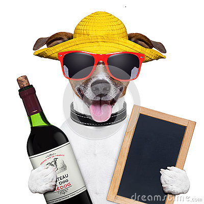Free Summer Dog And Wine Bottle Royalty Free Stock Photos - 31306368