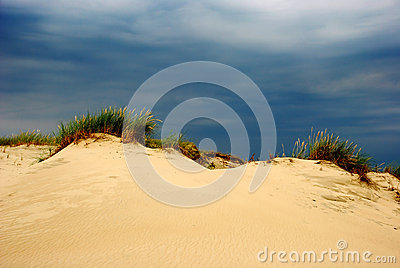 Summer on the dunes