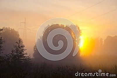 Summer end misty morning dawn