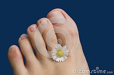 Summer feet toes