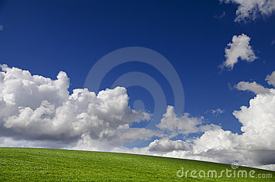 Summer Field Stock Image - Image: 20788891